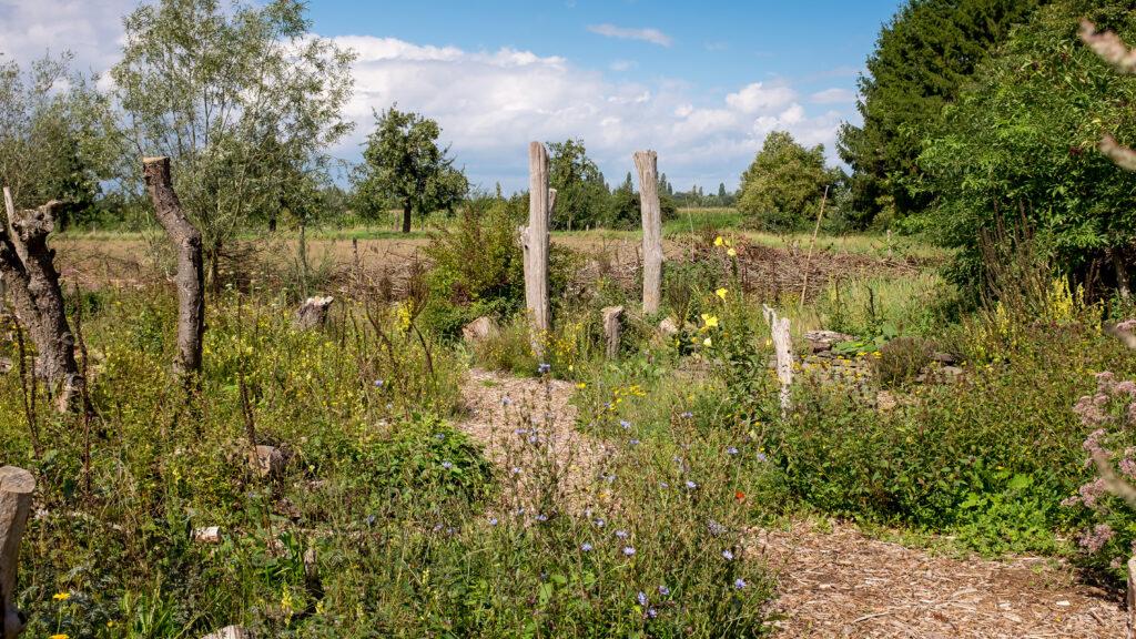 Offener Sonntag in der Naturarena in Wesel am 05.09.2021 2-