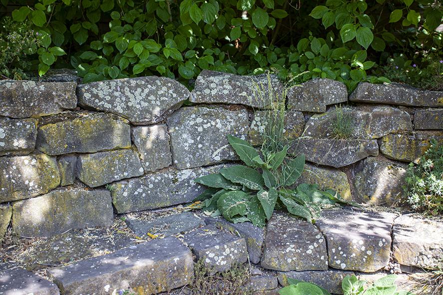 Niedrige Trockenmauer 2-