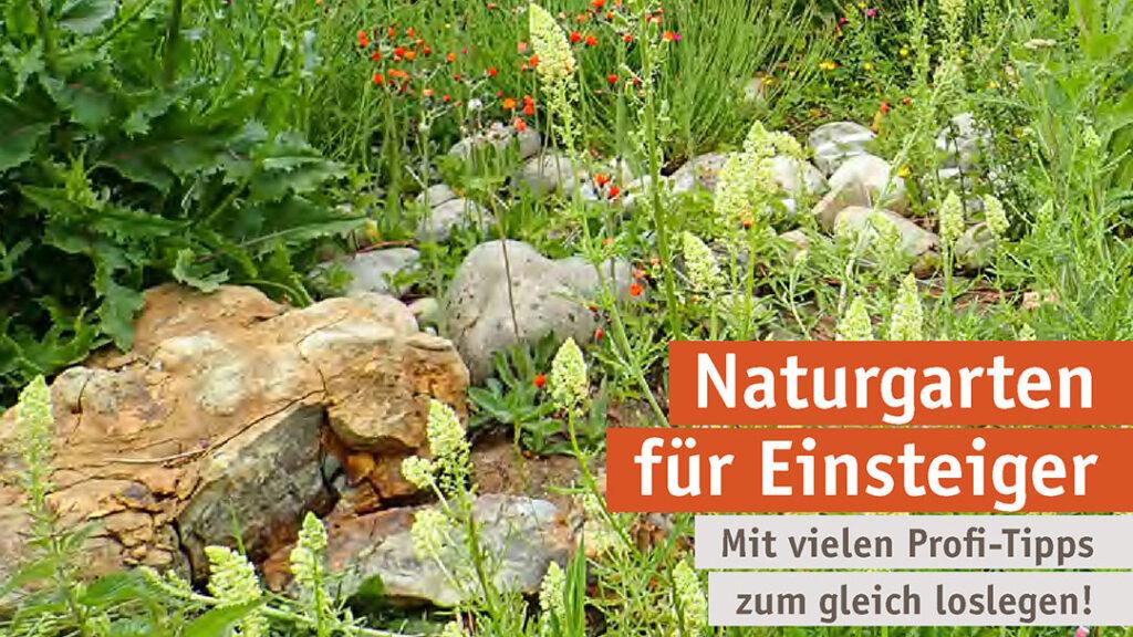Naturgarten für Einsteiger 3-
